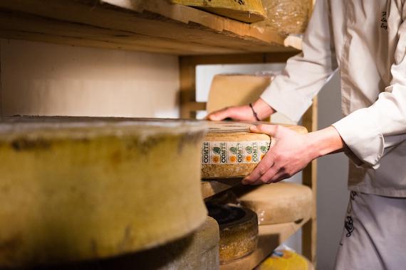 Comment bien conserver ses fromages, où, et à quelle température