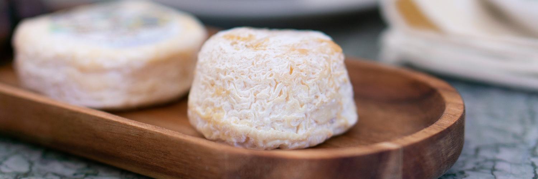 Découvrez le Pule, le fromage le plus cher du monde !