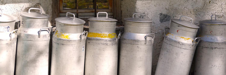 Fromage au lait cru ou pasteurisé, quelle est la différence ?