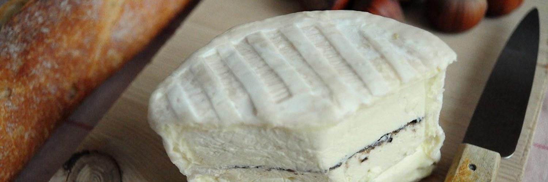 Brillat-Savarin : sa vie, son oeuvre, son fromage !