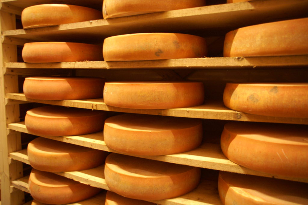 difference-gruyere-emmental